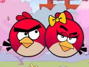 Angry Bird Seek Wife