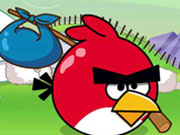 Online game Angry Bird Journey