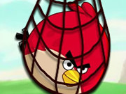 Surround Angry Bird